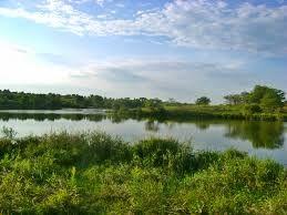Pierce Creek Recreation Area
