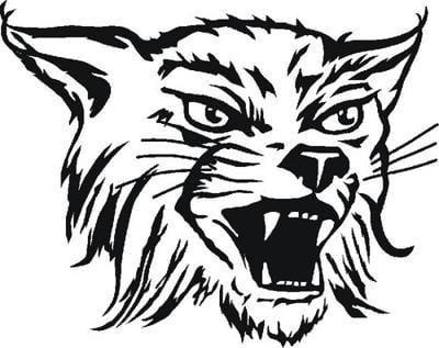 Abraham Lincoln Lynx