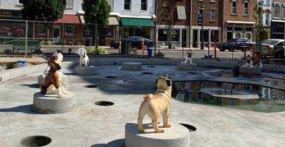 Dog statues in South Main Plaza fountain