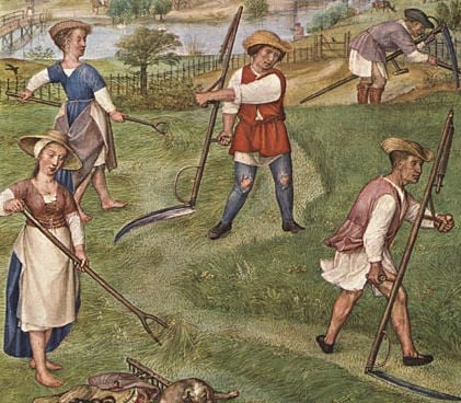 Haymaking with scythes