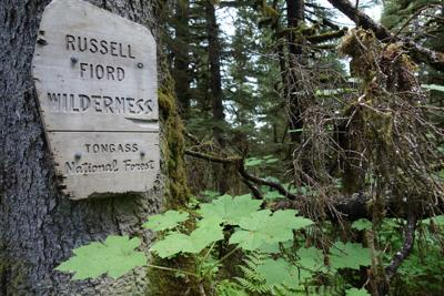 Russell Fjord Wilderness Ned Rozell