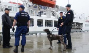Coast Guard law enforcement team