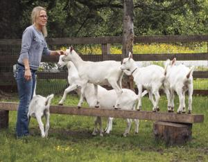 "<p class=""p1"">Kelli Foreman of the Kodiak Baptist Mission spends time with young goats born on the Heritage Farm.</p>"