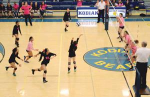 State volleyball begins today