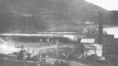 Harpoon harvest: Part 2 of a look at Kodiak's whaling history