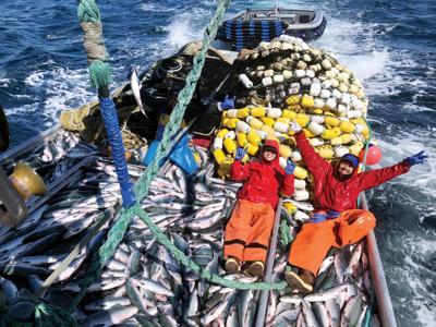 Slow start to Kodiak's commercial salmon season