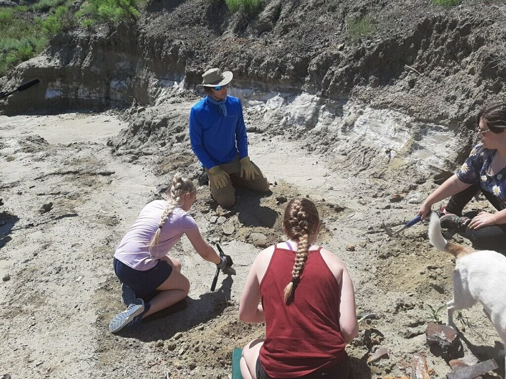 Local girl helps excavate dinosaurs