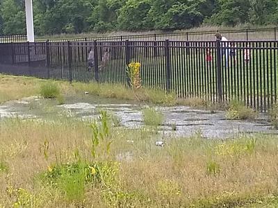 Katfish Katy's occupancy license revoked following sewage issue, noise levels