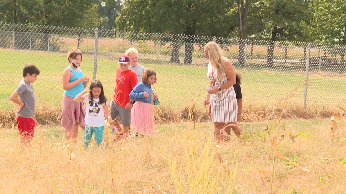 Columbia elementary school reaps this year's harvest in their own backyard