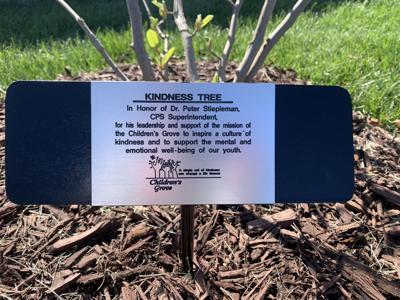 Tree dedication to Stiepleman