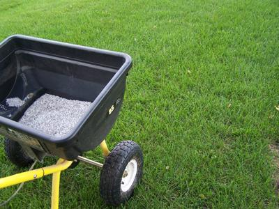 Don't forget fertilizing as weather cools off