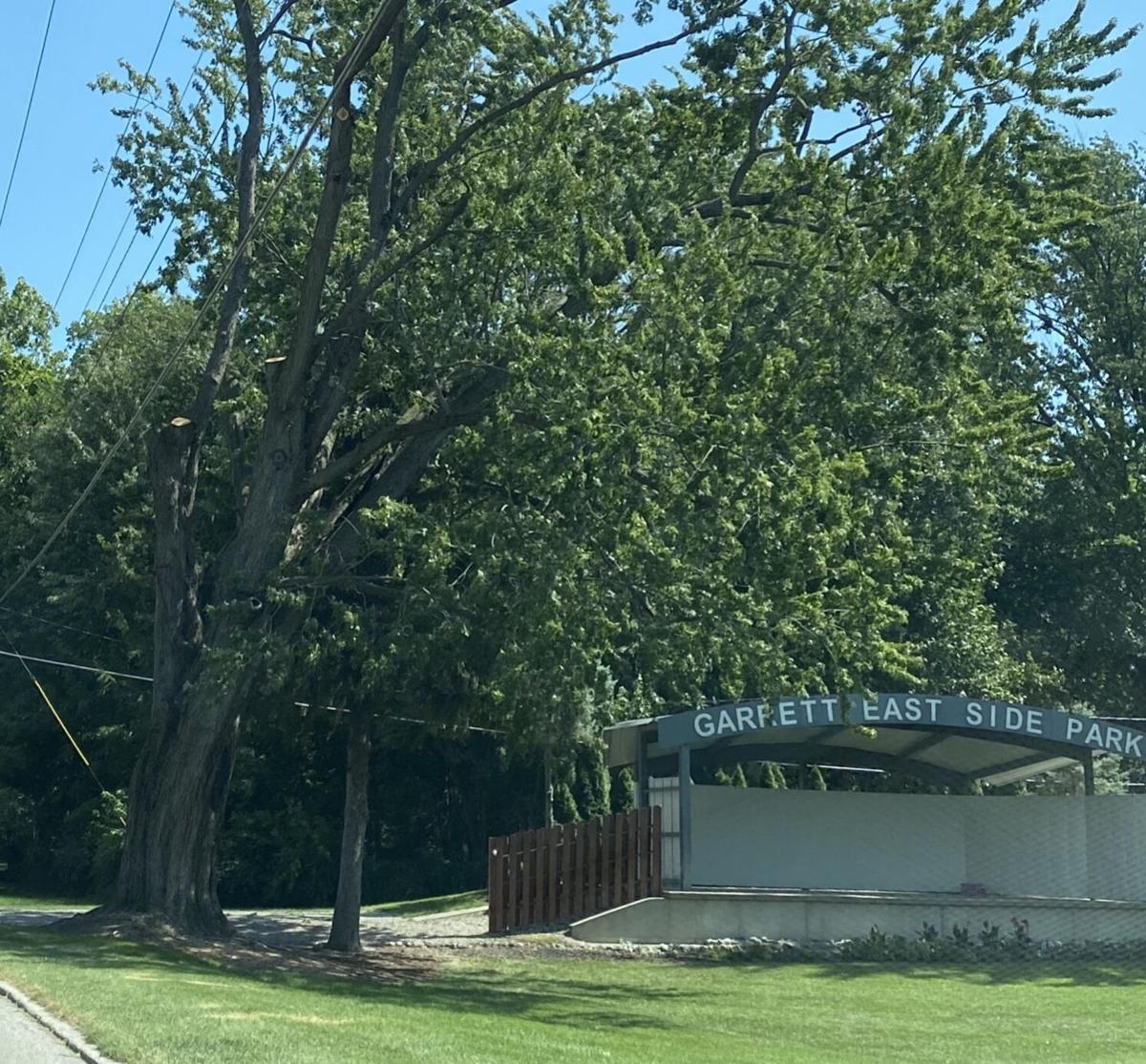 Tree threatens Eastside Park stage