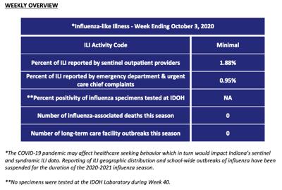 Flu report Week 40