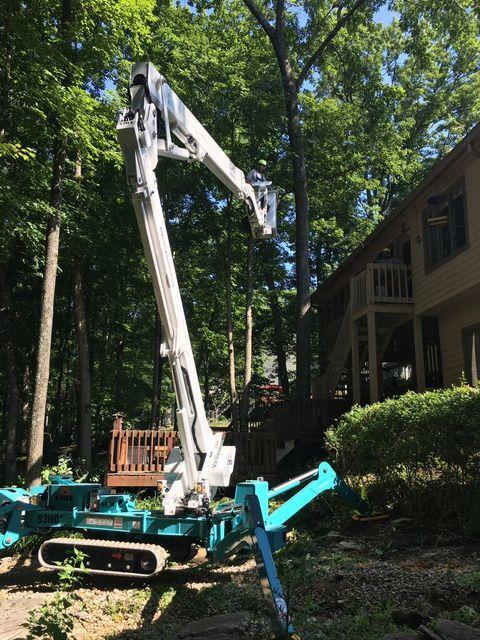 Tree care machinery