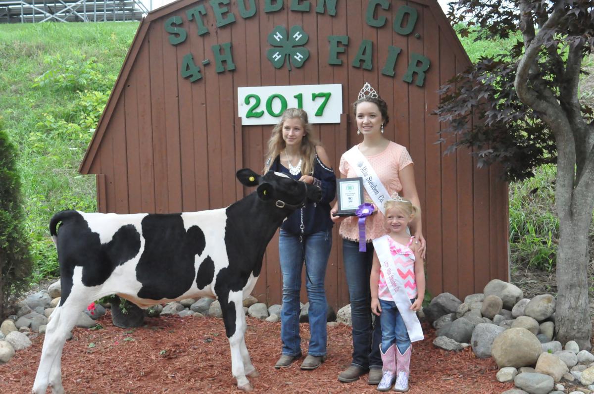2017 Steuben County 4-H Fair livestock shows | Photo