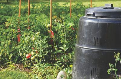 Compost bin in the garden