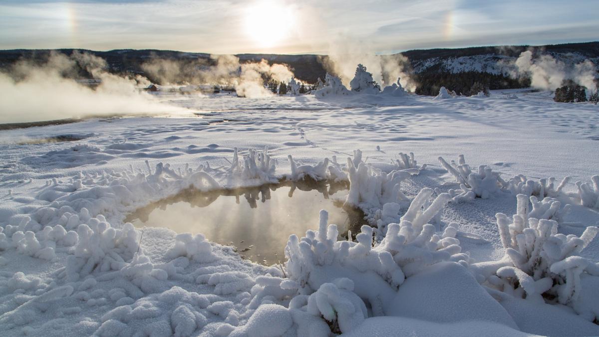 Neal Herbert -  Yellowstone National Park