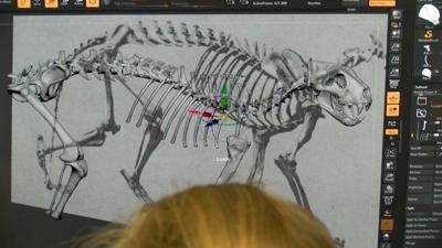 A Modern Approach to Paleontology