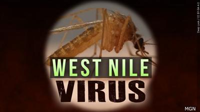West Nile Virus 01
