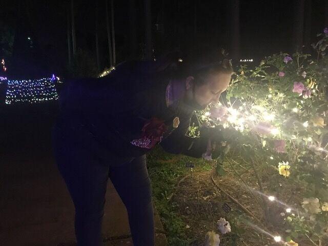 Christmas At Roseland In Shreveport La 2021 37th Annual Christmas In Roseland Begins Soon Community Ktbs Com