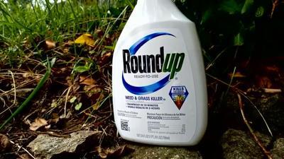 Roundup .jpg