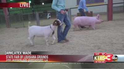 Jr. Livestock auction