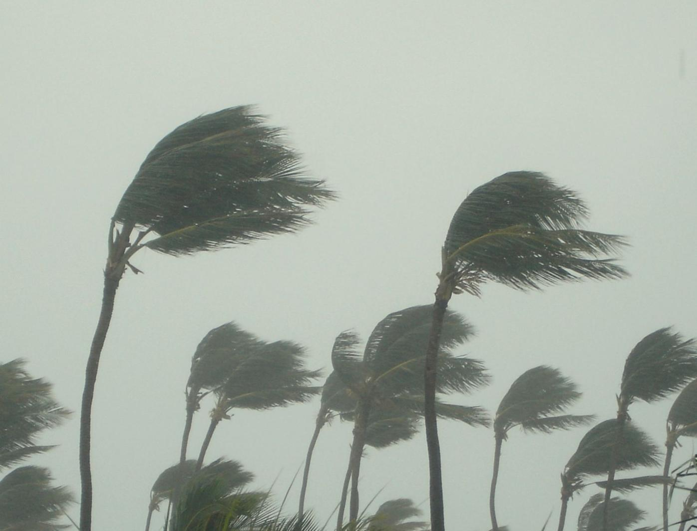 Figure 1:  Hurricane Image