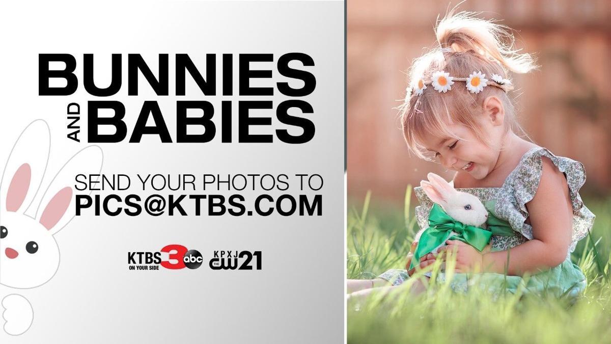 Bunnies and Babies