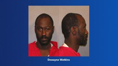 Dewayne Watkins