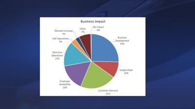 NLEP business impact pie chart
