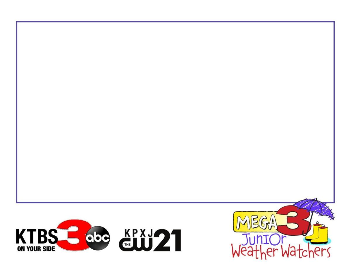Jr. Weather Watchers Entry Form