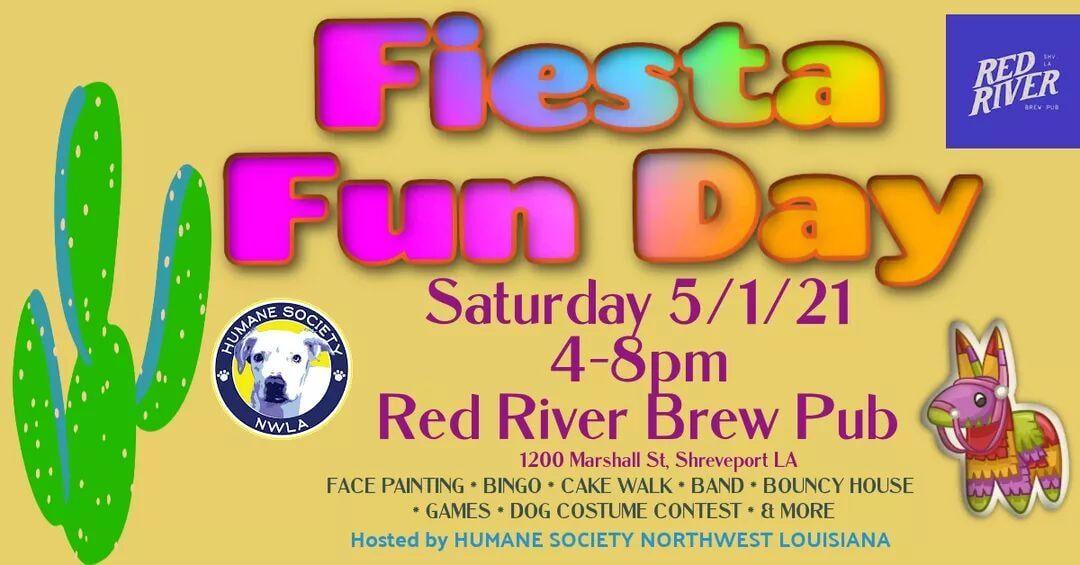 Fiesta Fun Day