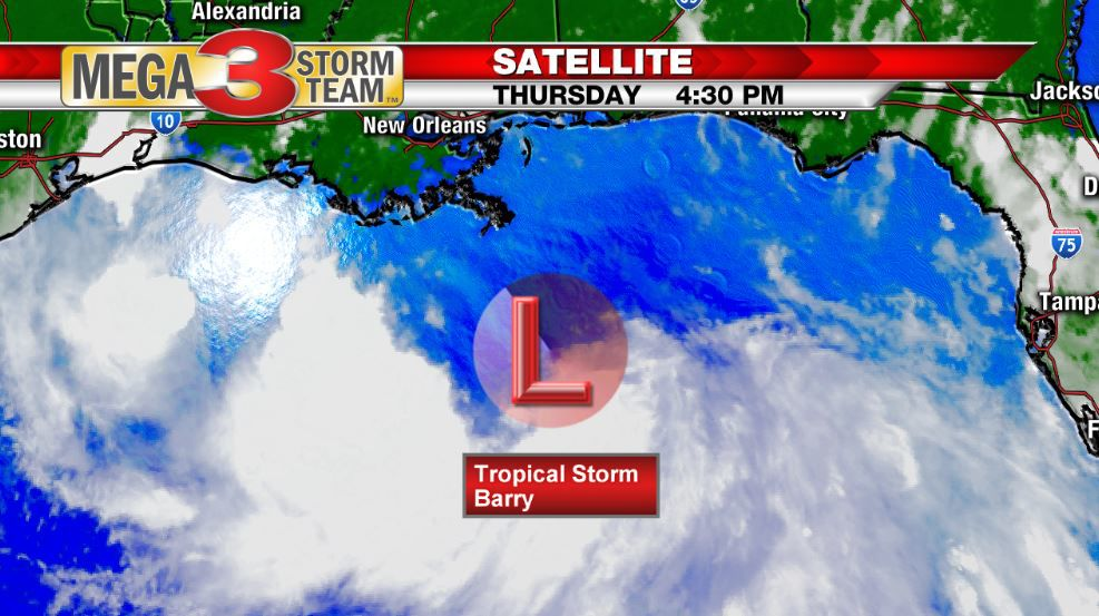 Satellite Image of Tropical Storm Barry