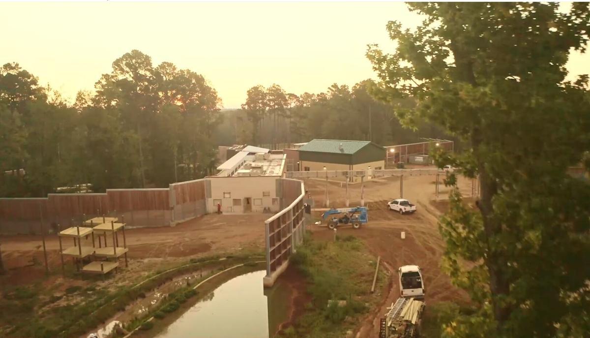 Chimp Haven - new construction Nov. 2020