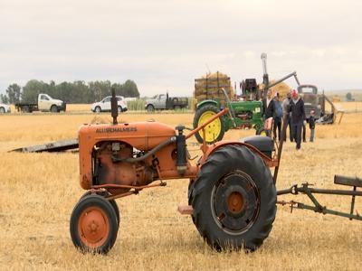 Antique Tractor Club hosts Threshing Bee