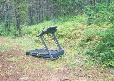 Please don't leave you treadmill on the trail