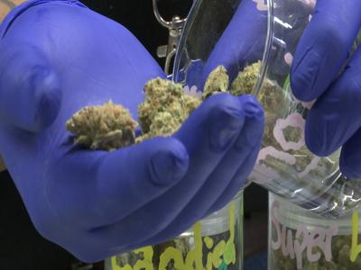 Groups working to get recreational marijuana on November ballot