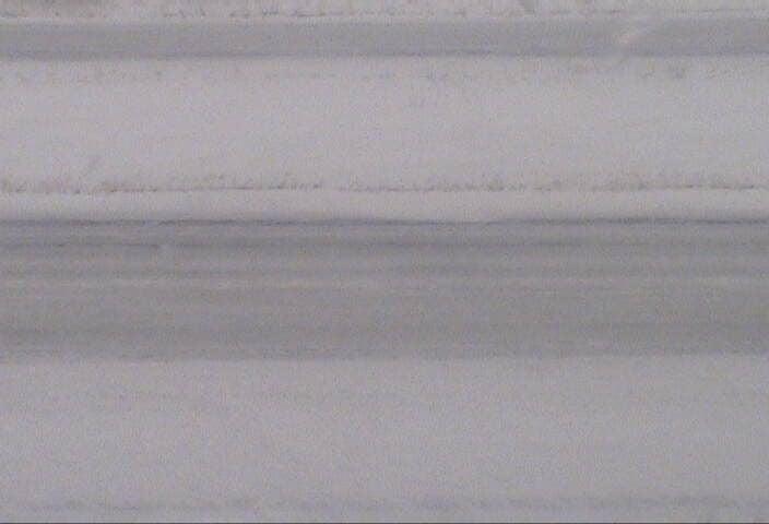 Livingston Snow