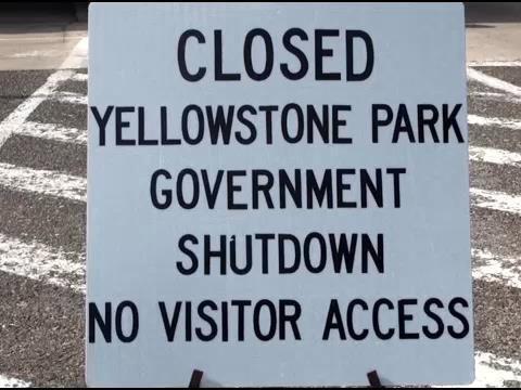 Yellowstone National Park Protest | News | kulr8.com