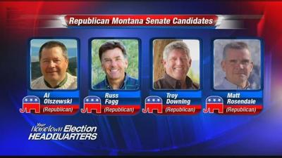 Meet the Republican candidates looking to take the U.S. Senate seat