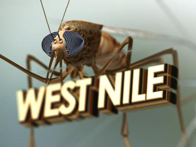 West Nile Virus confirmed in mosquito samples in 3 Montana counties