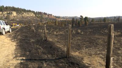 Harris Fire burns 800 acres of rancher's pasture