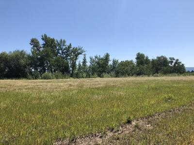 Triangle plan outlines future development for one of the fastest growing areas in Montana