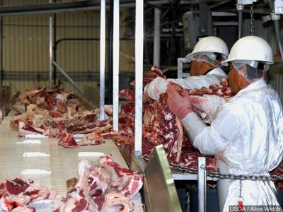 Meat processing generic