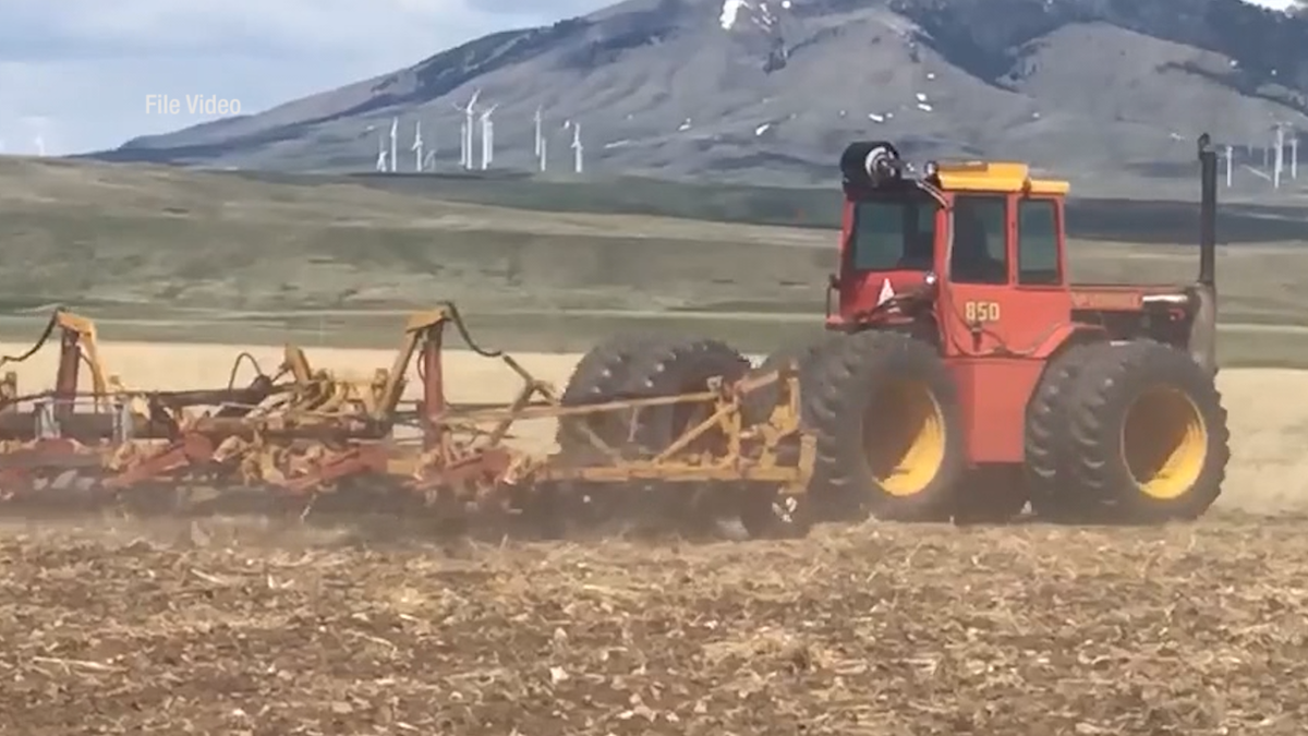 Tractor working on crops