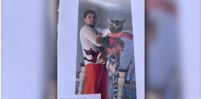 Houston's missing tiger found after it's turned in by its owner