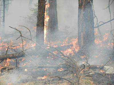 Crews knock down human-caused fire near Thompson River