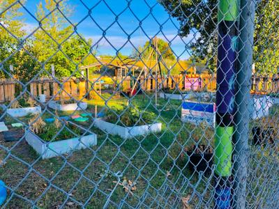 Westside Orchard Garden helping children learn nutrition