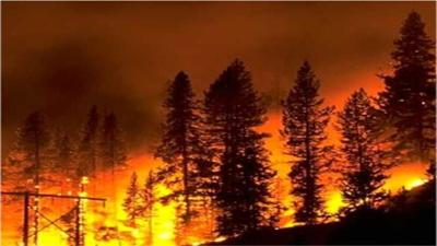 2014 Could Be Costly Fire Season