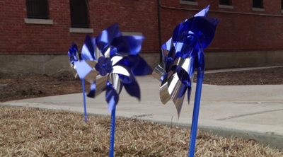 Blue pinwheels represent over 140 kids in Gallatin County affected by child abuse